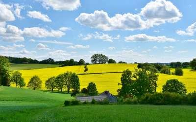 Придобиване на имот по давност